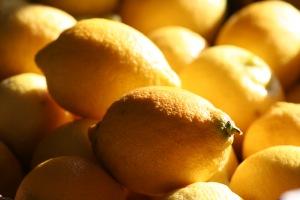 citroenen (4)
